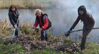 В «чистий четвер» в Переяславі-Хмельницькому очільники міста висадили липову алею