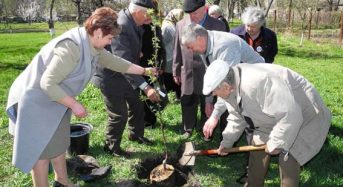 В Переяславі-Хмельницькому ветерани знову садили дерева в Саду пам'яті