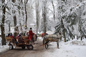 На Київщині відбулося святкування «Благословенні Миколаєм» , фото-8