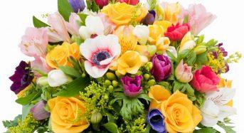 Привітання Дячинській Михайлині Тадеївні в ювілейний День народження від місцевого самоврядування