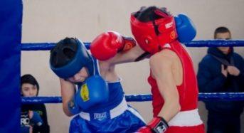 Відбувся чемпіонат Київської області з боксу серед юнаків 2005-2006 р.н.