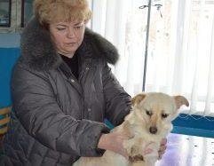 Лариса Глоба рятує бездомних собак і прилаштовує їх у добрі руки