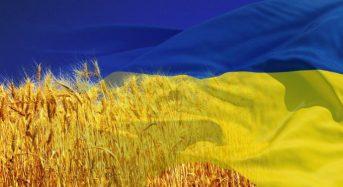 Як Київ святкуватиме День Незалежності