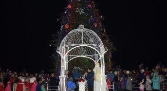 На центральній площі засяяла головна новорічна ялинка