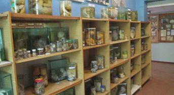 Музей патології людини у Переяславі. Про нього мало хто знає, а ще менше тих, хто в ньому був