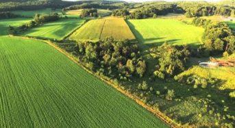 Законопроєкт 2194 вирішить проблеми у сфері земельних відносин – АМУ звернулася до Голови Верховної Ради України
