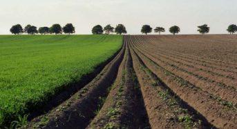 Які громади Київщини вже отримали найбільшу кількість земель державної власності