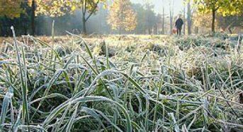 23 вересня Гідрометцентр прогнозує заморозок